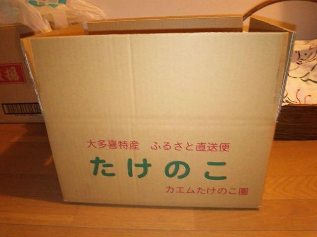 kaemu-takenoko1.jpg