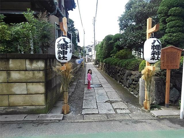 yoi-KIMG0812s.jpg